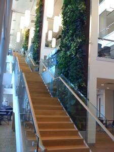 Living Wall at Bell Canada's Creekbank Campus